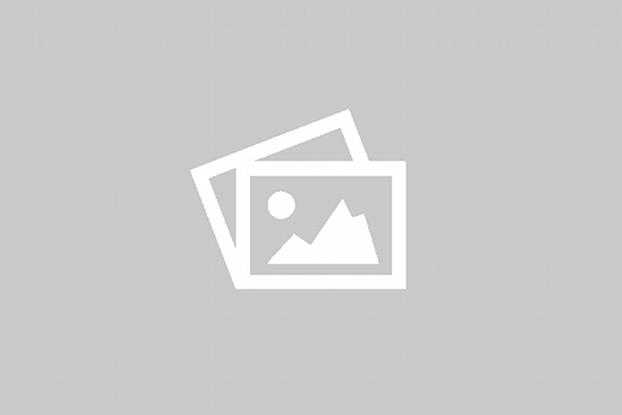 Bot T28 0.25 Pet Mod Osito